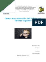 ensayo de modelos de atencion.docx