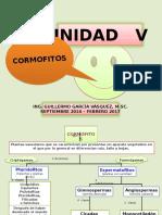 u 5 - Pteridofitos - Clase