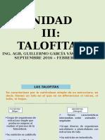u 3 Talofitas Clases