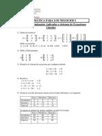 Ejercicios Propuestos Matrices Determinantes y Aplicaciones