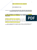 amparo-gasolinazo.docx