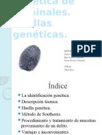 Identificacingenticadecriminales Huellasgenticas 100216131628 Phpapp02