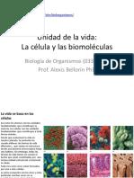 1 La Célula y Las Biomoleculas