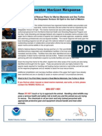 Public Flyer Marine Wildlife Response Action Plan