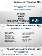 Proyecto Final Integrador-rev1