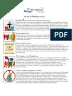 DDa PrincipiosdelaDemocracia