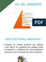 Ley Penal del Ambiente.