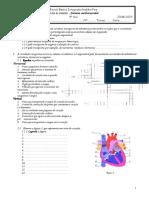 Ciências Naturais - 9ºAno - Ficha de Trabalho sobre o Sistema Cardiovascular (1).pdf