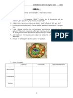 Cuestionarios Globales Asignatura 3º