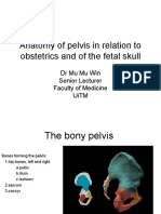 34026104 070710 Anatomy of Pelvis and Fetal Skull