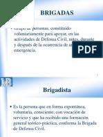 BRIGADAS DE SALVATAJE