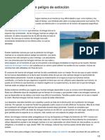 Tortugas Marinas en Peligro de Extinción