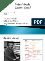 6065-11897-2-PB (2).pdf