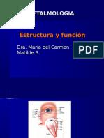 1. Anatomia Ojo
