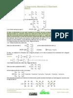 F BC2 02 Determinantes
