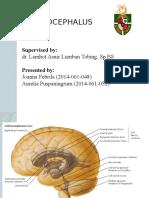 Hydrocephalus Teori Final