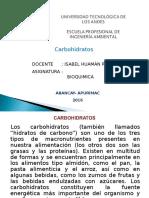 carboidratos 2016