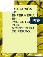 Actuacion de Enfermeria en Pacientes Por Mordedura de Perro