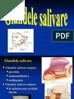 Glandele Salivare Majore, 2015