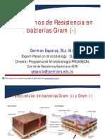 2. Resistencia en Enterobacteriaceae