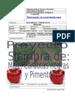 Proyecto Maiz Caraotas Negras y Frijol