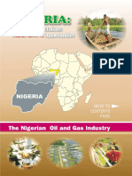Summary About Nigeria Oil & Gas.pdf