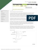 13071191-cocina-japonesa-2.pdf