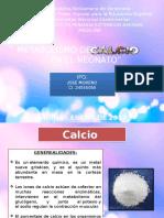 Metabolismo Del Calcio en El Neontao