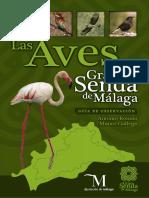 Aves de Malaga