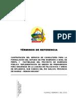 Palcacocha Tdr 2015 (1)-Proyecto Definitivo- GORE