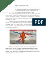 Efectul radiatiilor asupra organismului uman.docx