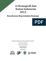 SDKI 2012 Remaja Indonesia