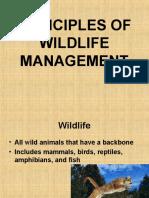 Wildlife Management Presentation