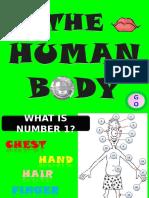 Body Parts 2