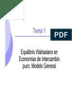 Tema1.EW.ModeloGeneral.pdf