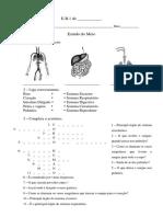 Estudo do Meio- sistemas.pdf