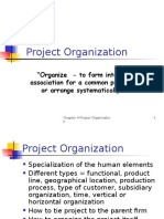 Project Organization...