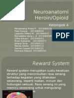 Kelompok 4 - Neuroanatomi Heroin
