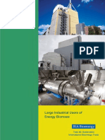 3. Large Industrial Users of Energy Biomass (IEA Bioenergy)