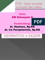 7. Dermatitis Yeni