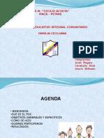 Presentacion Peic a representantes.pptx