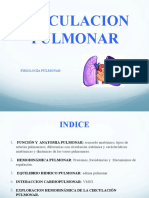 fisiologiarespiratoriaii-131123191632-phpapp02