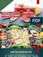 Las Proteinas Corregido