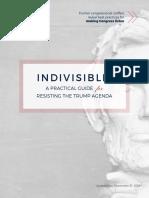 IndivisibleGuide_2016-12-31_v1.pdf