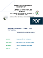 informe-triplayera-IndustrialUcayali