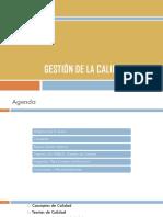 Gestion_de_Calidad.pdf