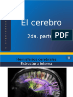 02_El_Cerebro_Parte_2.pptx