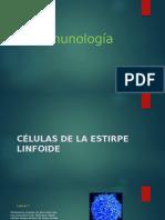 celulas linfoides