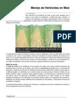 17. Manejo de Herbicidas en Maiz