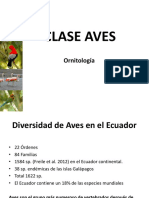 5. Clase Aves (1)